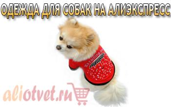 odezhda-dlya-sobak-aliexpress